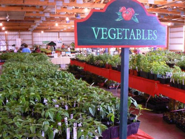 State College Pa Calendar Annual Master Gardener Plant Sale Centre County May 20 2017