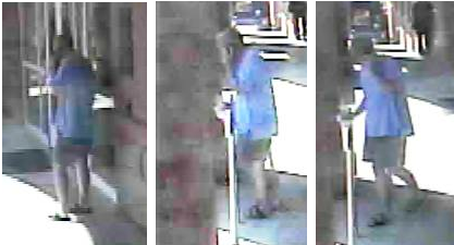 State College Police Investigate Indecent Exposure and an Assault