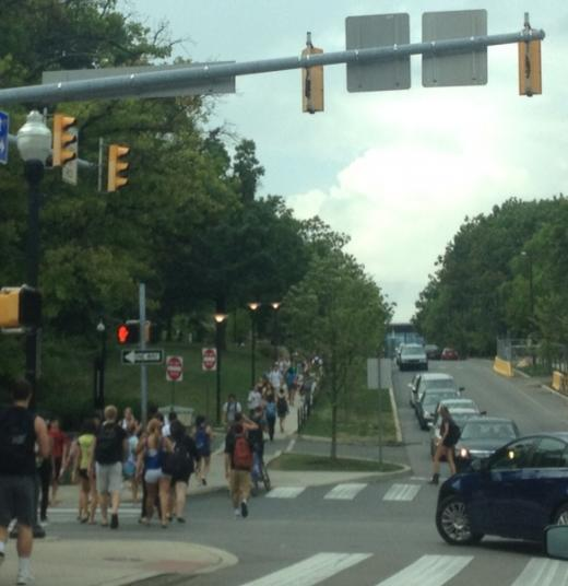 Holly Swanson: A Friendly Reminder to Students When Crossing College Avenue