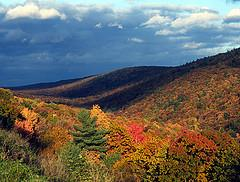 Mind and Matter, Research at Penn State: Fall Leaf Forecast Optimal . . . For Leaf Peeper Ulcers