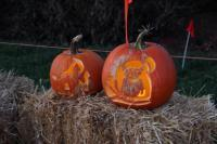 Penn State Arboretum Second Annual Pumpkin Festival Photo Gallery