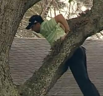 Viral Videos: When You're Up a Tree, Try a Wedge Shot