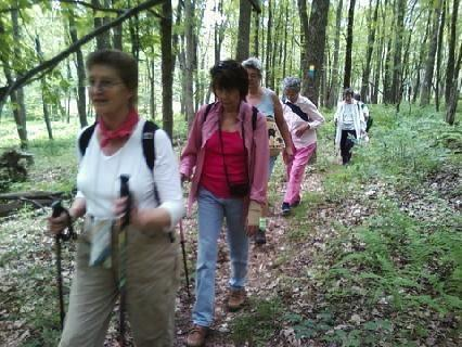 Seniors on the Trail to Adventure