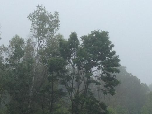 Dense Fog Possible Tuesday Morning