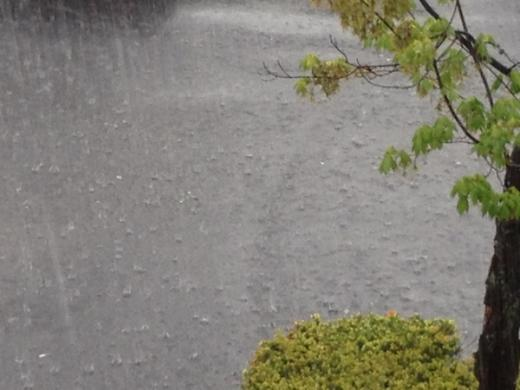 Heavy Rain Triggers Flood Advisory Wednesday Afternoon
