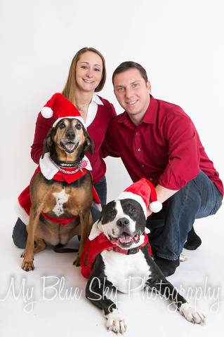 Holiday Pet Portraits to Bring Cheer, Support Centre County PAWS