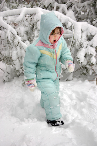 Extreme Cold Poses Health Risks to Humans & Animals Alike