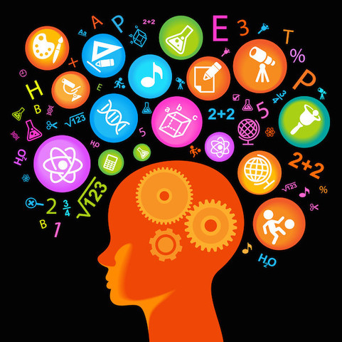 More School, More Challenging Assignments Add up to Higher IQ Scores