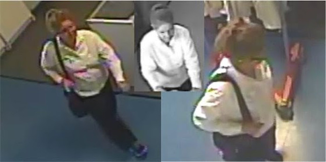 Police Looking for Suspect in Theft from Goodwill