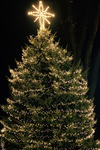Community Rings in the Holiday Season with State College Tree Lighting
