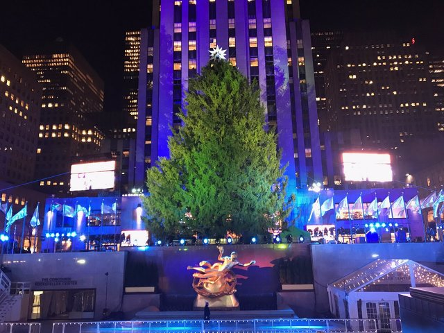 Centre Region Tree Takes the Spotlight at Rockefeller Center