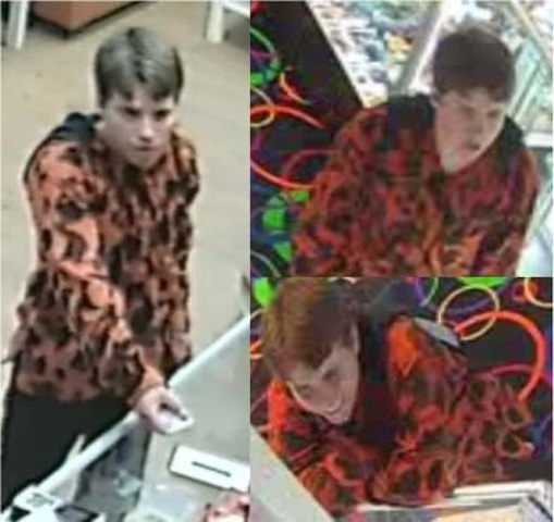 Police Seek Suspects in Theft, Credit Card Fraud Cases