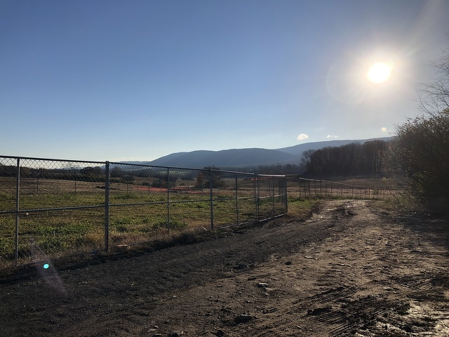 The Cottages, Whitehall Road Regional Park Move Forward