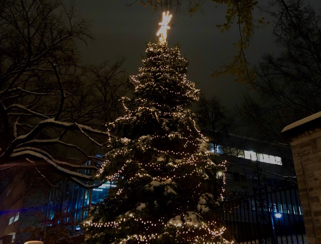 Tree Lights On University Avenue Are >> State College Pa Tree Lighting Kicks Off Holiday Season In