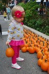 Downtown Fall Festival celebrating 20 years