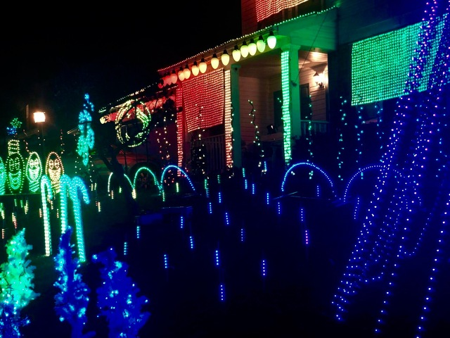 Holiday Lights Show Brightens up the Season