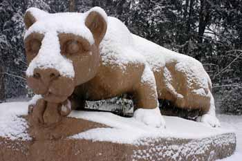 Penn State, State College Noon News & Features: Thursday, Dec. 15