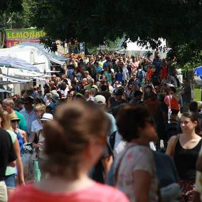 Arts Fest Alcohol-Related Emergencies Exceed State Patty's Day Figures