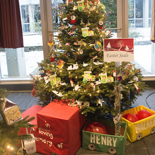 Heartfelt Tribute to Student's Memory Takes Top Honor at Festival of Trees