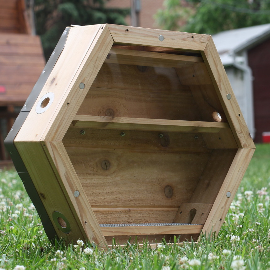 Busy as a Bee: Local Entrepreneurs Bring Hives to Homes
