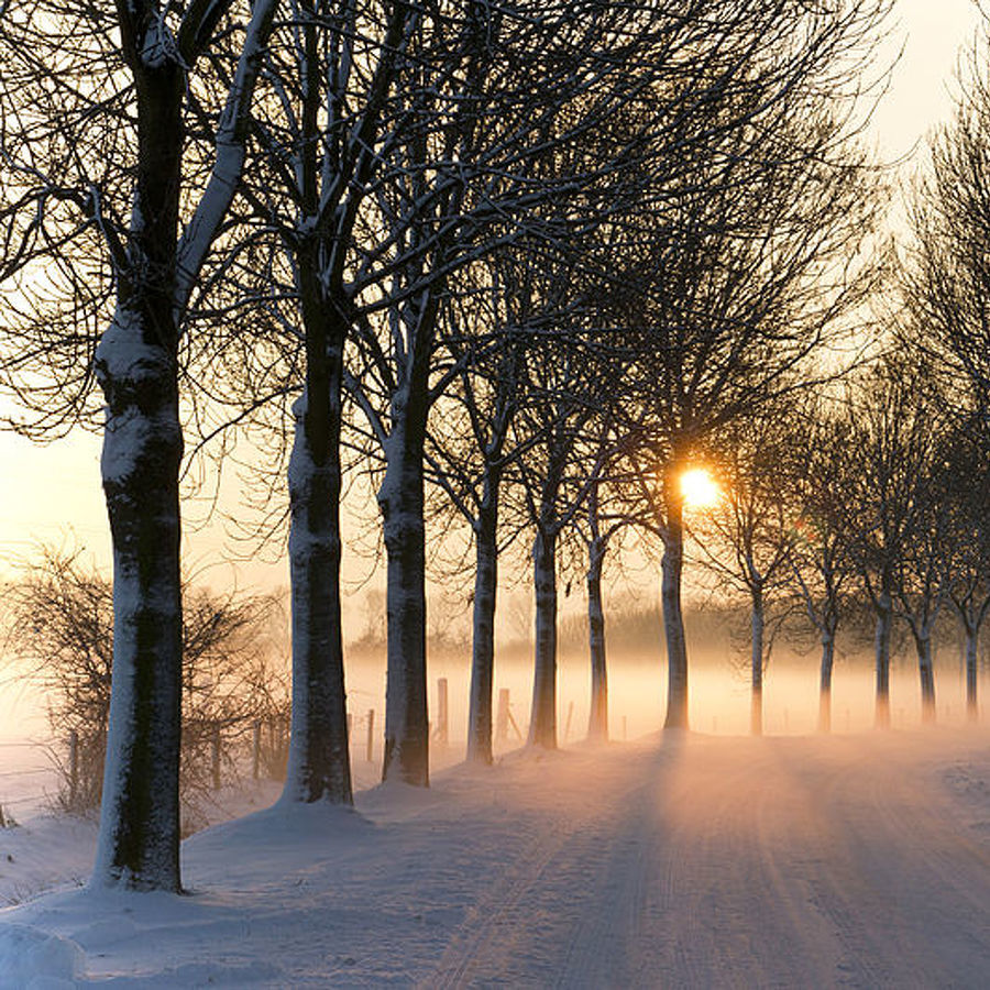 Preparing for a Safe, Healthy Winter