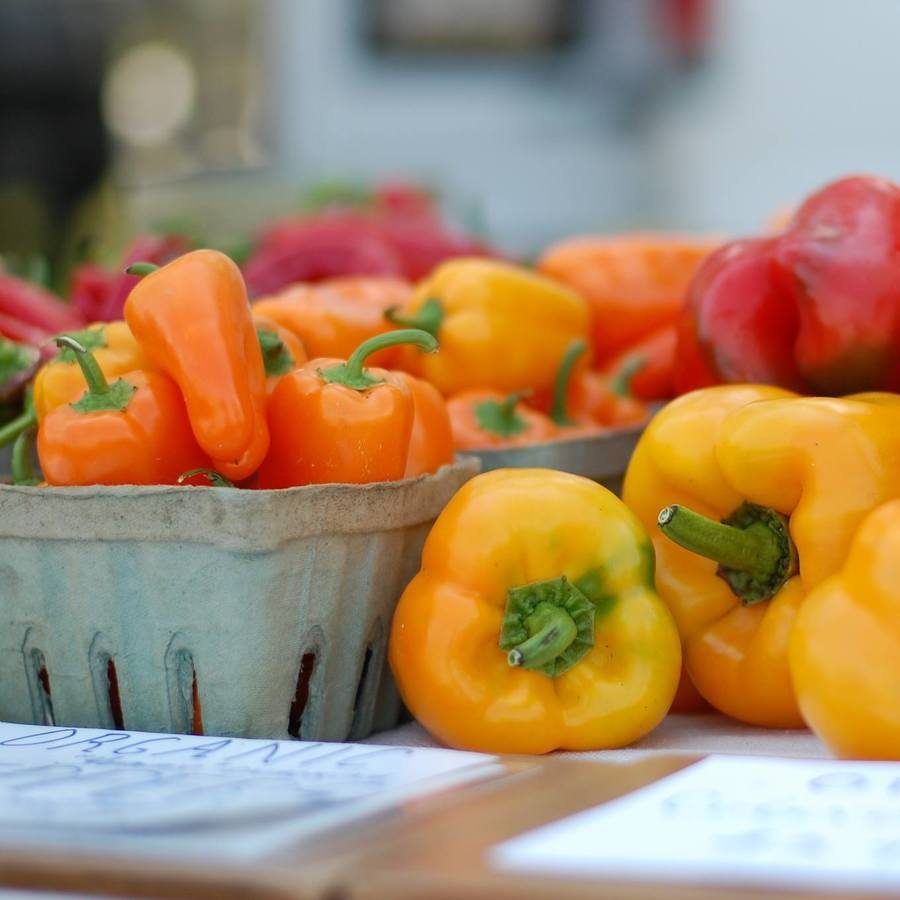 Boalsburg Farmers' Market to Accept SNAP Customers