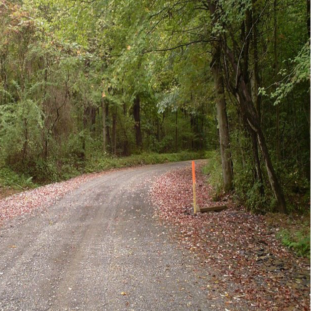 Rural road ecology course to offer students real-world training