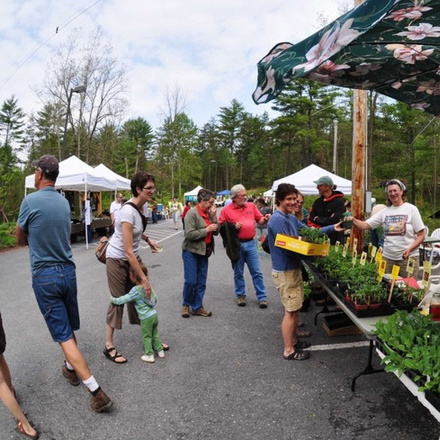 Native Plant Festival Set for New Location May 7