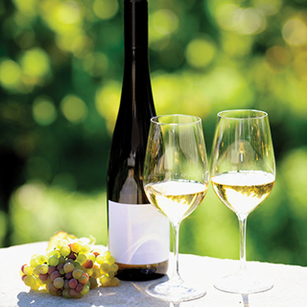 From the Vine: The Right Stuff about Riesling