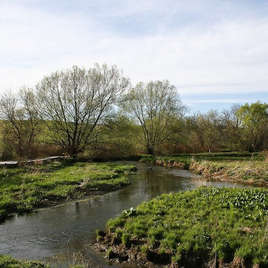 Milbrook Marsh welcomes visitors with new native garden