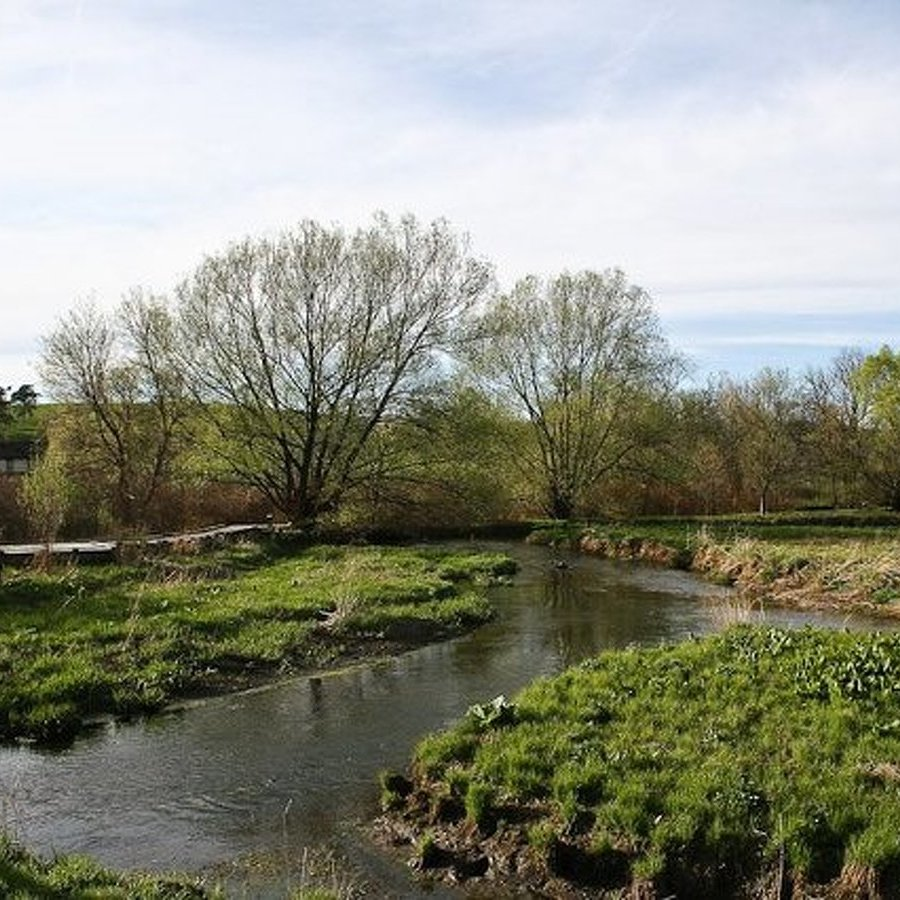 Millbrook Marsh Welcomes Visitors with New Native Garden