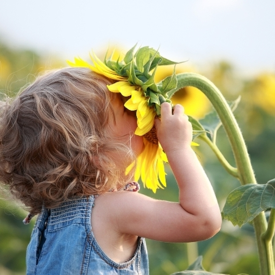 The Avid Gardener: Make Memories with Children