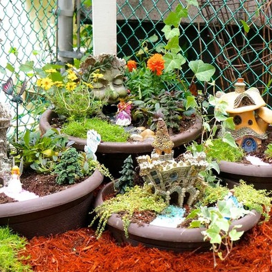 The Avid Gardener: Fairy Gardens Are Magical