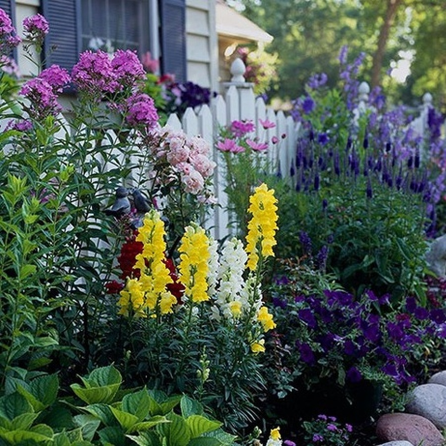 The Avid Gardener: The Placid Days of Late Summer