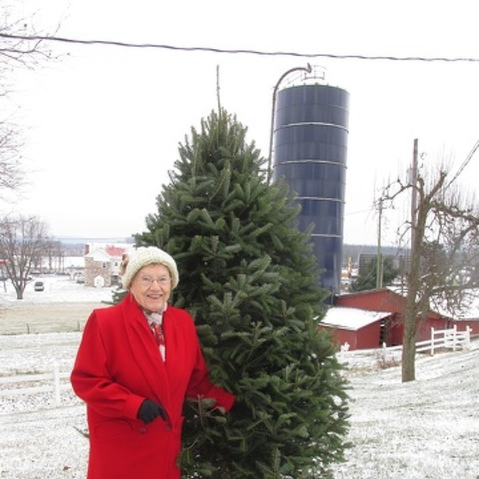 Old Fort Family Has Unique Holiday Tradition, Atop Silo