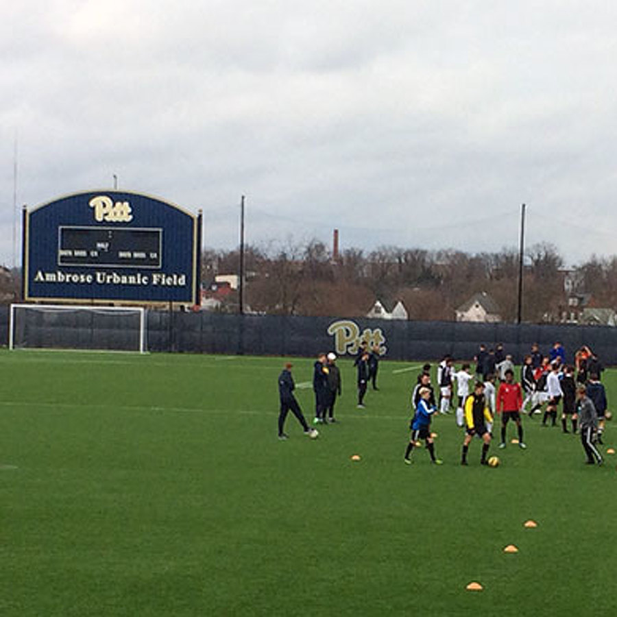 Health Care and Soccer: How I Softened My View of Pitt