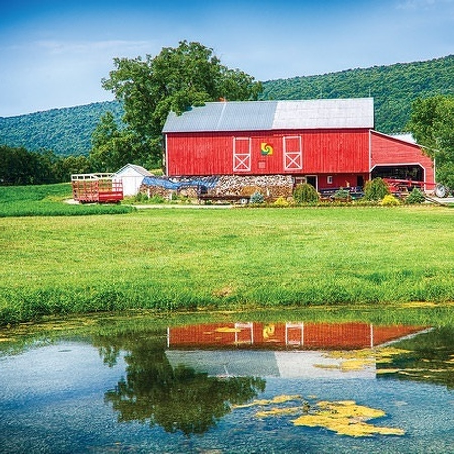Bellefonte Photographer Captures Pennsylvania Quilt Barns, Honors Through Lens