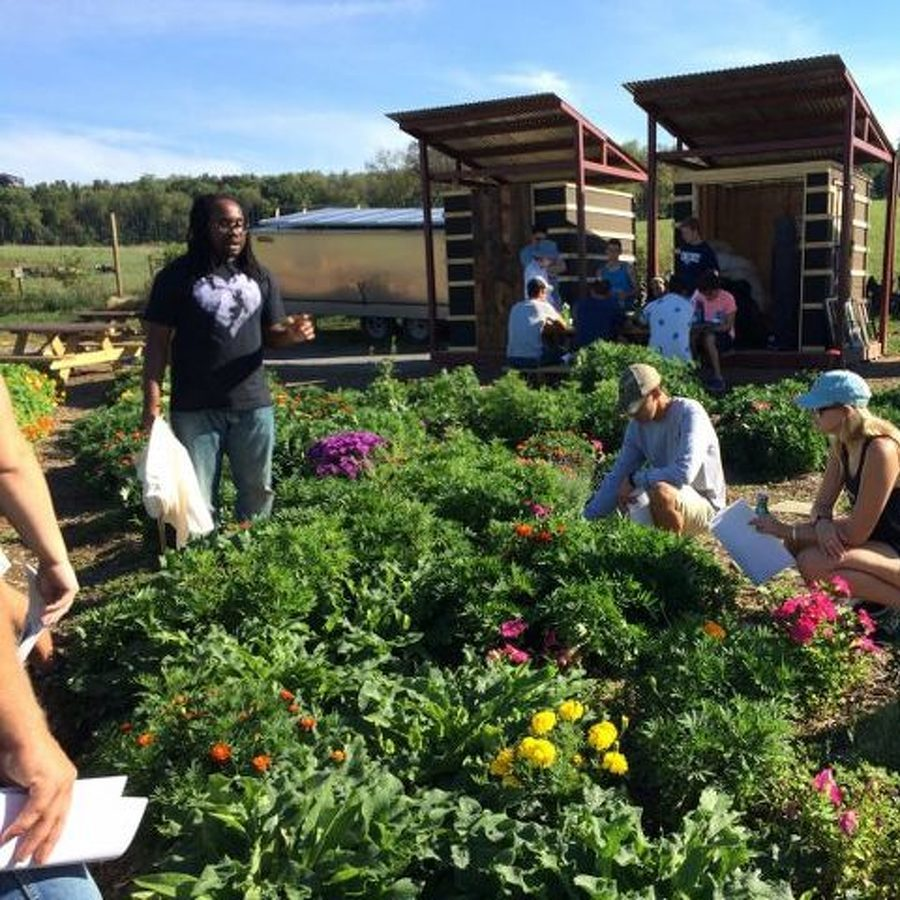 Student Farm, The Barn at Lemont to Host Home Gardening Workshop