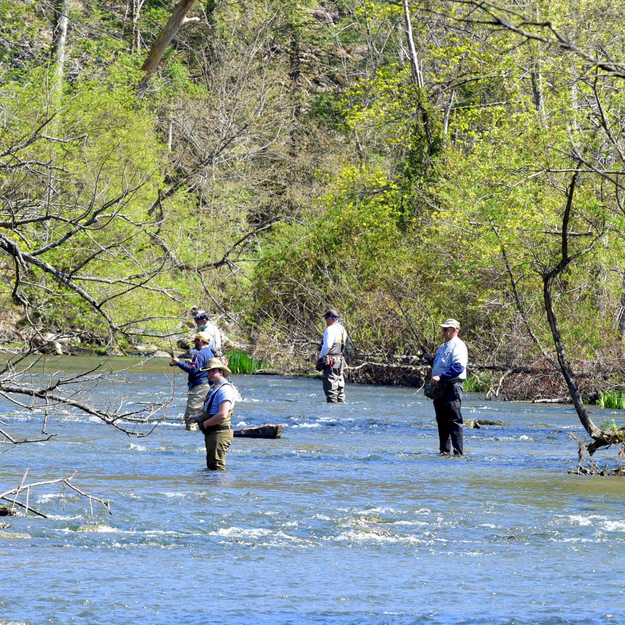 Trout Unlimited receives hefty conservation grant