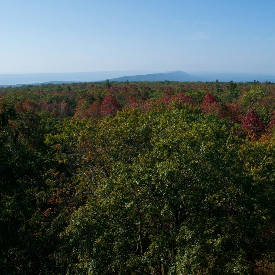 5 Fall Foliage Hikes Near State College