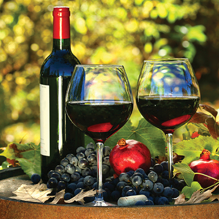 From the Vine: Pinot Noir is Right for Fall