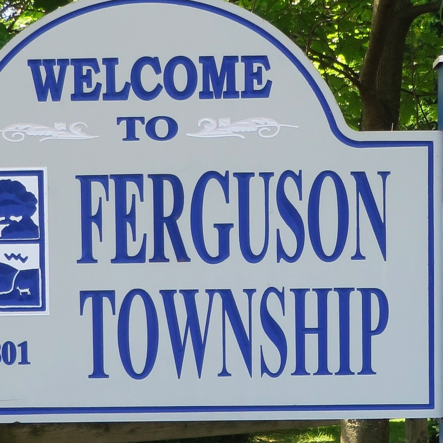 Downed Tree Causes Power Outage in Ferguson Township