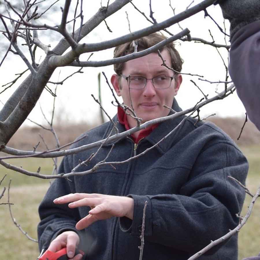 Plant Scientist Offers Fruit Tree Pruning Tips