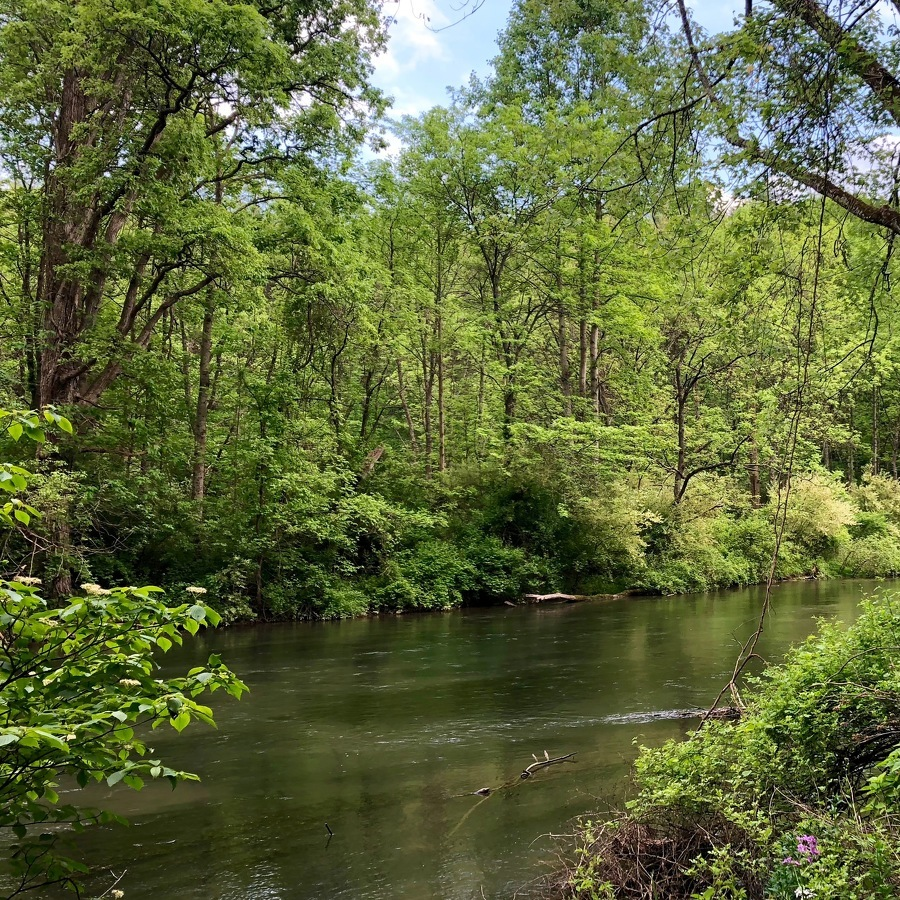 Researchers to Lead Discussion About Region's Water Quality and Resources