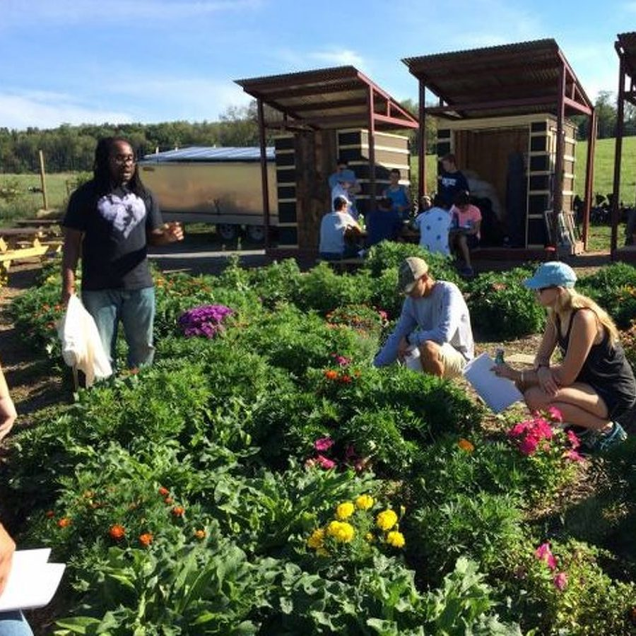 Student Farm to Commemorate Summer Solstice with Second Annual Celebration
