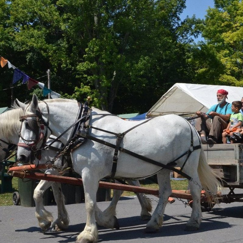 FarmFest Returns for 7th Year with New Features