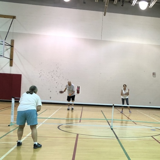 Retirees Get Back in the Game with Pickleball