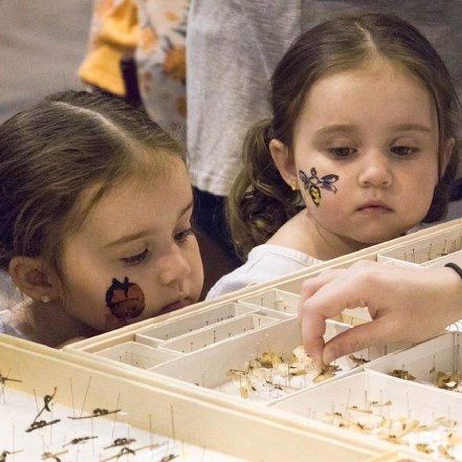 Penn State's Great Insect Fair Celebrates Insects in Pop Culture