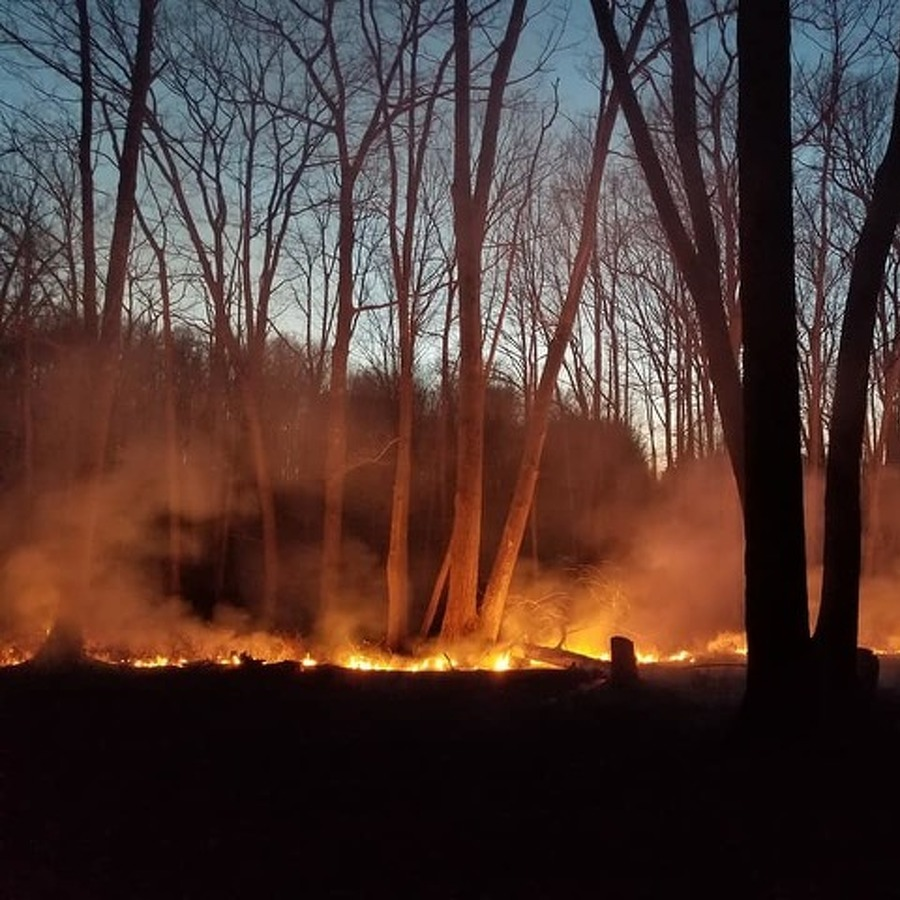 State Grants to Help County Fire Companies Fight Wildfires