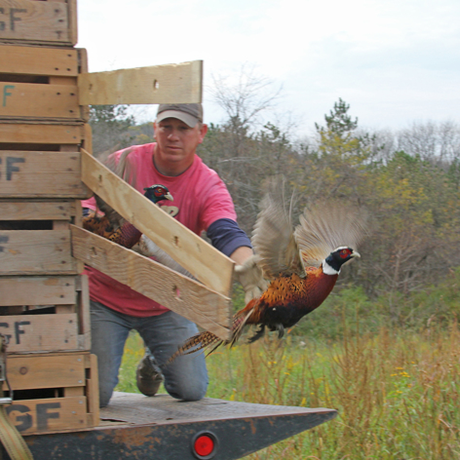 Small Game Hunting Seasons Set to Open